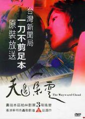 【天边云一朵】2005国产剧情片 720P