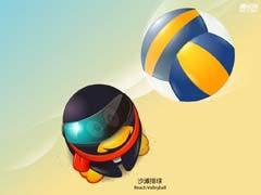 排球/沙排
