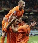 乌拉圭VS荷兰 范布隆克霍斯特庆祝(6)
