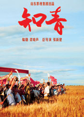 知青(2012版)