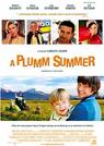 普卢默的夏天